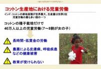 インドのコットン生産地における児童労働