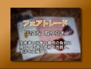 DVD「おいしいチョコレートの真実」チャプター4「児童労働をなくす取り組み」産業の取り組み、フェアトレード