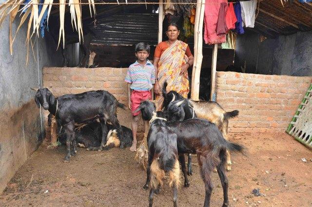 2010年3月、ヤギの放牧をして働いていた時のクマール君とお母さん