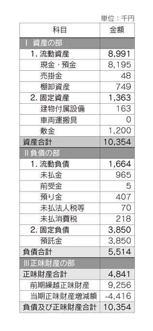 ACE 2013年度(前期)貸借対照表
