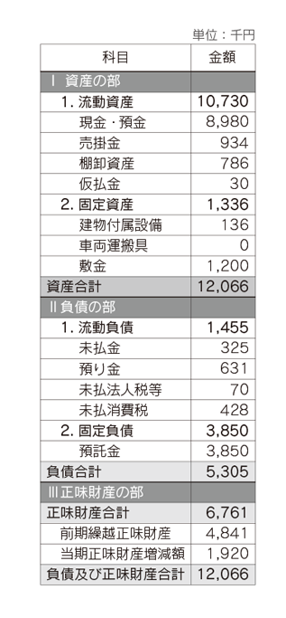 ACE 2013年度(後期)貸借対照表