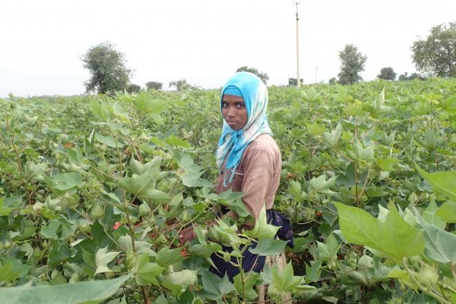 畑で働く子ども